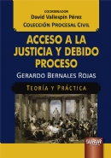 Acceso a la Justicia y Debido Proceso - Teoría y Práctica