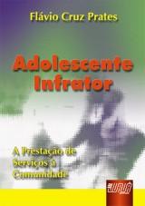 Capa do livro: Adolescente Infrator - A Prestação de Serviços à Comunidade, Flávio Cruz Prates