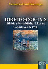 Capa do livro: Direitos Sociais, Alessandra Gotti Bontempo
