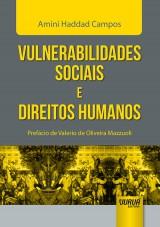Capa do livro: Vulnerabilidades Sociais e Direitos Humanos - Prefácio de Valerio de Oliveira Mazzuoli, Amini Haddad Campos