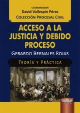 Capa do livro: Acceso a la Justicia y Debido Proceso - Teoría y Práctica, Gerardo Bernales Rojas