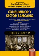 Capa do livro: Consumidor y Sector Bancario - Teoría y Práctica, Director: David Vallespín Pérez – Coordinadora: Nancy Carina Vernengo Pellejero
